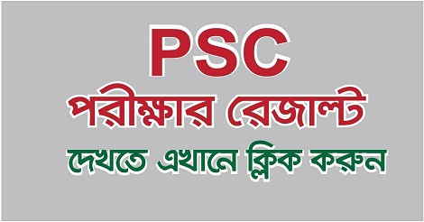 PSC Result 2019 with Marksheet – dperesult.teletalk.com.bd